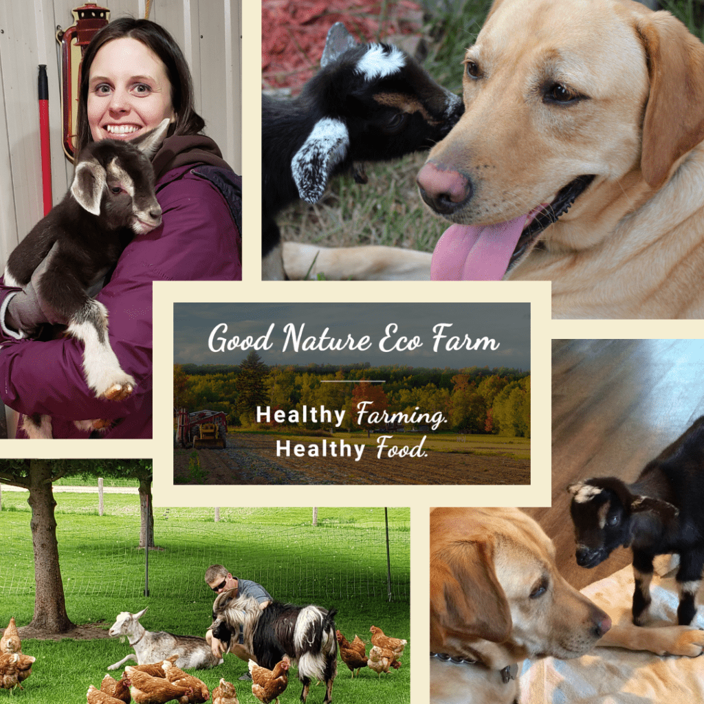 collage from Good nature eco farm