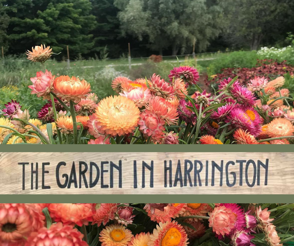 """Colourful flowers against rural background with wooden sign, """"The Garden in Harrington"""""""